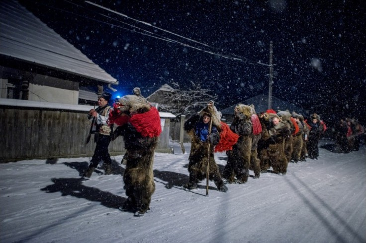 beardancers12