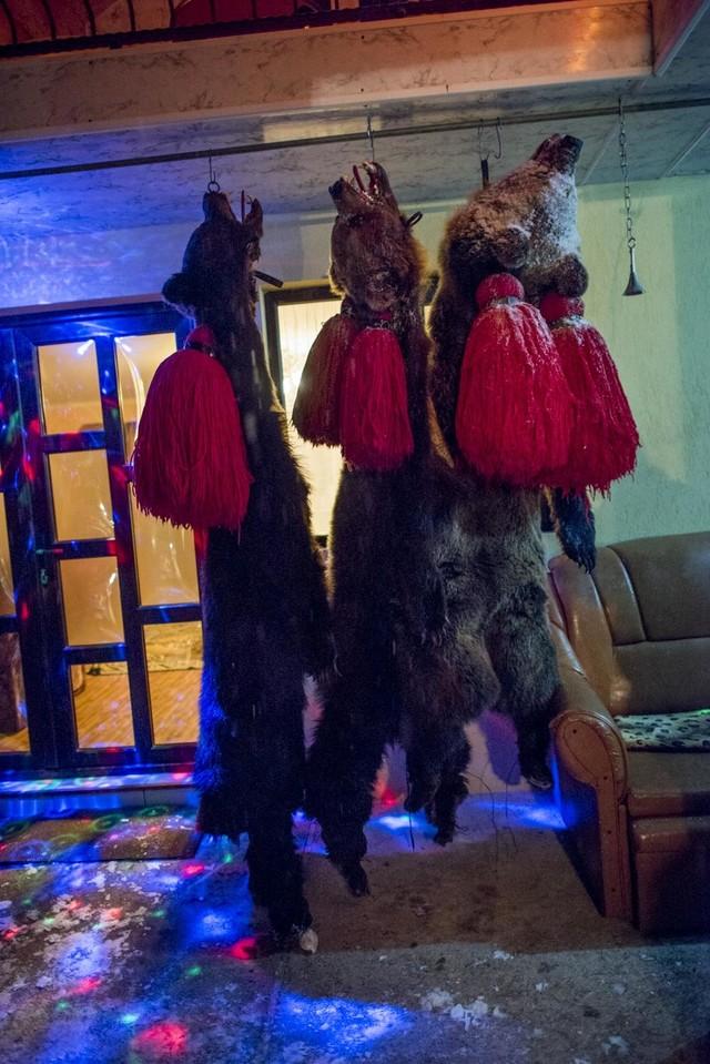 beardancers14.jpg